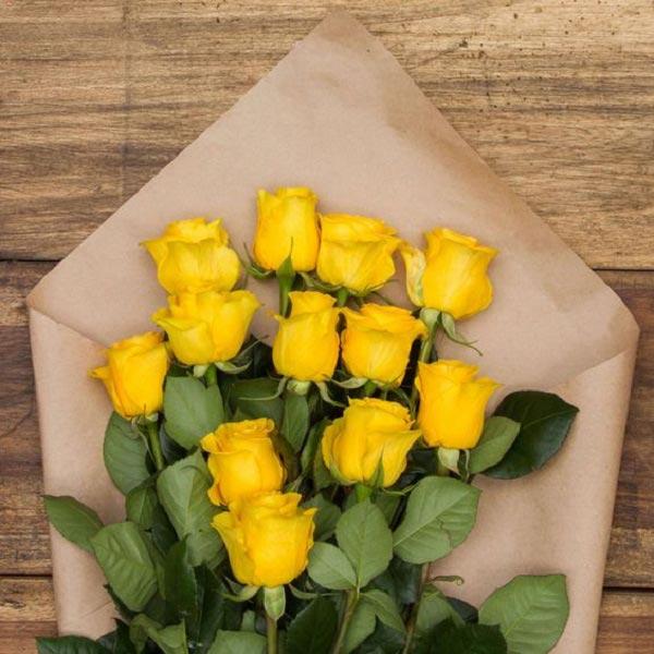 عکس گل رز زرد رنگ