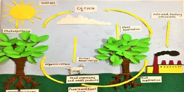 چرخه دی اکسید کربن برای ساخت کاردستی برای مدرسه